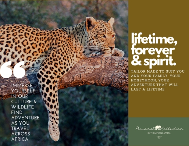 Immerse yourselfin our culture & wildlife find adventure as you travel across africa