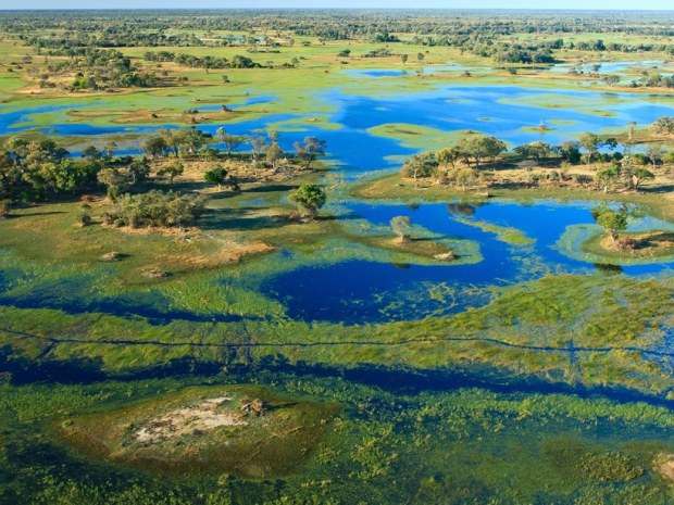 okavango-delta-botswana-GettyImages-111650618