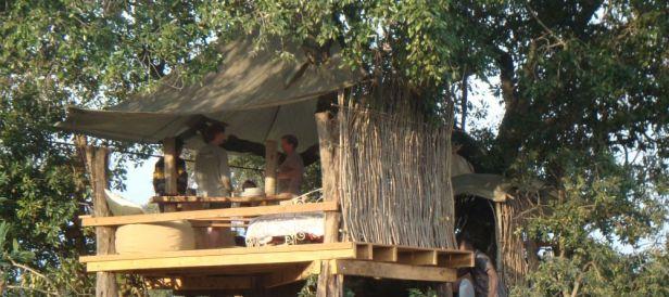 the_nest_tree_house