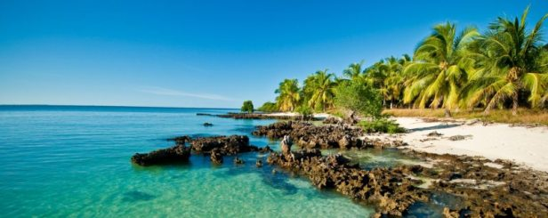 BANNER_Stock_Mozambique_Quirimbas_JustinFox-800x319