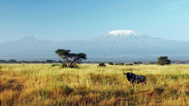 mount-kilimanjaro-40583895-1483439695-ImageGalleryLightboxLarge