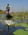 pom-pom-camp-okavango-delta-botswana-2087