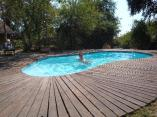 the-pool