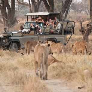 safari-experiences-gallery-9