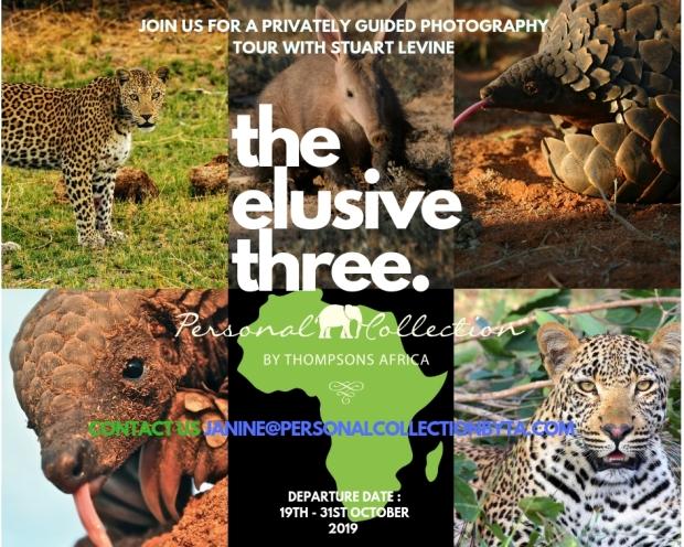 the elusive three