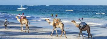 the-kenyan-coast